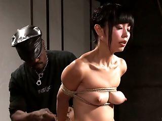 Babe, BDSM, Beauty, Black, Cute, Ethnic, Horny, Petite, Rough, Slut,