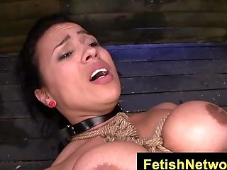 BDSM, Bobcat, Bondage, Bound, Cougar, Cumshot, Fetish, HD, Spanking,